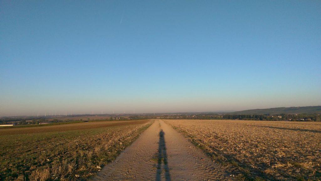 SunriseRun: Zwischen den Feldern