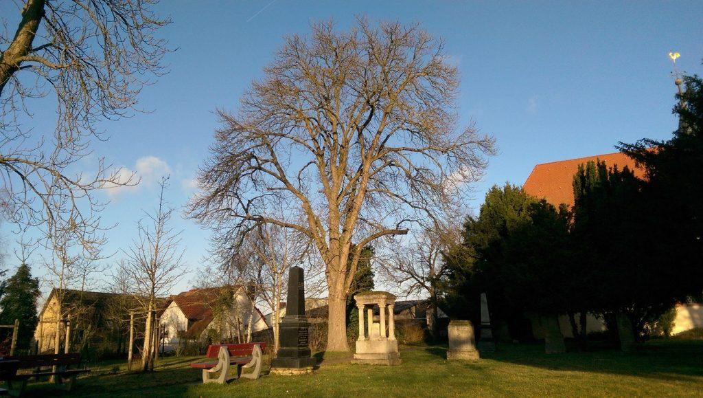 Joggen, Schreiben und #SunriseRun: Friedhof
