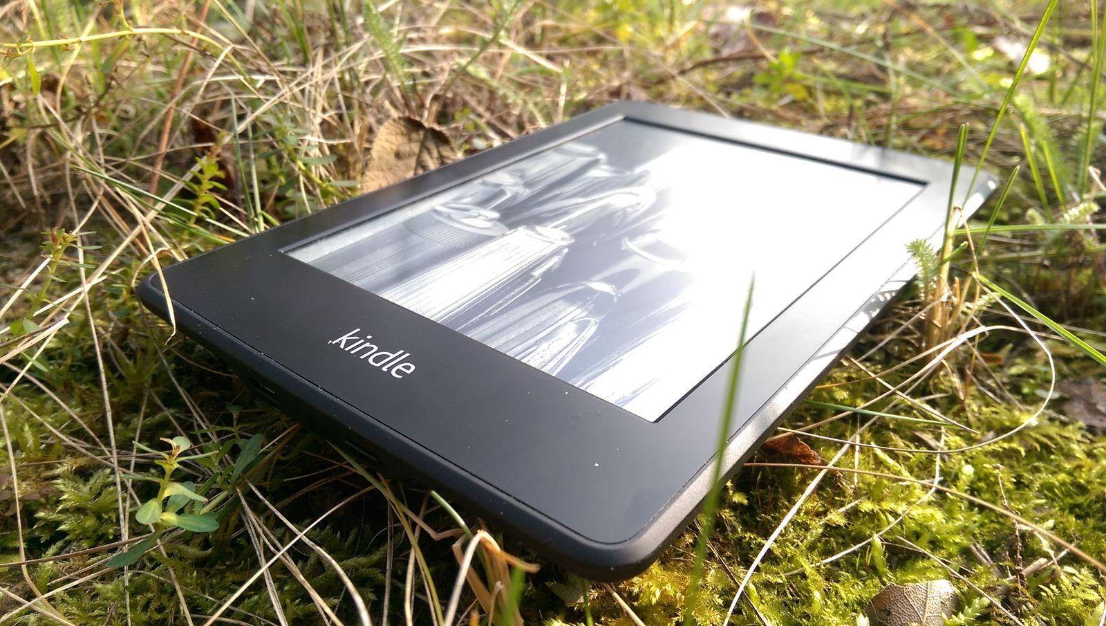 Kindle im Gras