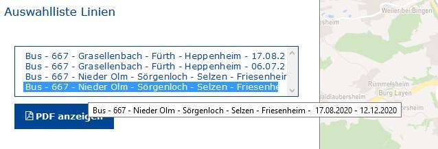 RNN-Linienfahrplan Linie 667 (Screenshot)
